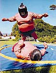 Sumo Wrestling Interactive Inflatable Rental