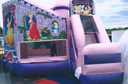 Disney Princess Castle with Slide